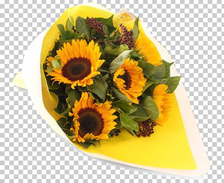 Floral Design Common Sunflower Cut Flowers Sunflower Seed PNG, Clipart, Common Sunflower, Cut Flowers, Floral Design, Floristry, Flower Free PNG Download