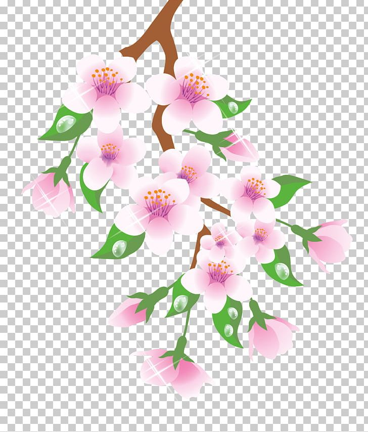 Spring Branch PNG, Clipart, Blossom, Branch, Cherry Blossom, Clipart, Design Free PNG Download