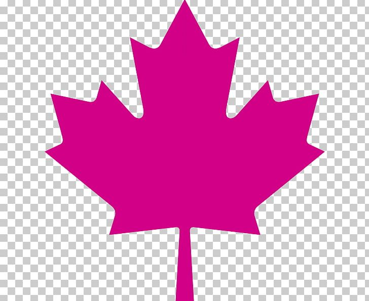 Flag Of Canada Maple Leaf PNG, Clipart, Canada, Clip Art, Flag Of Canada, Flower, Flowering Plant Free PNG Download