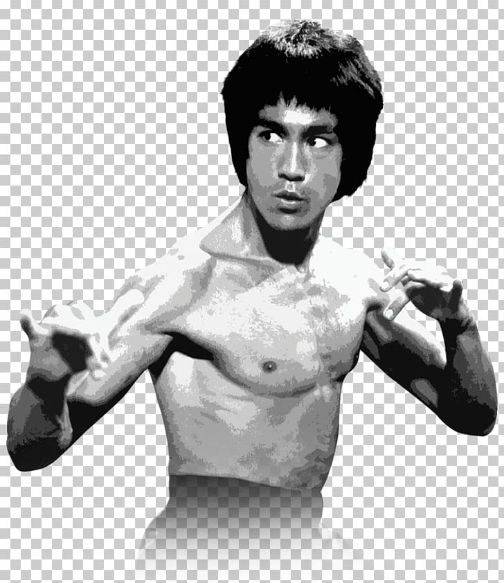 The legend of bruce lee cartoon, png, 565x539px, bruce lee, brand.