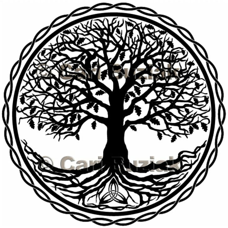 Tree Of Life Celtic Sacred Trees Symbol Png Clipart Area