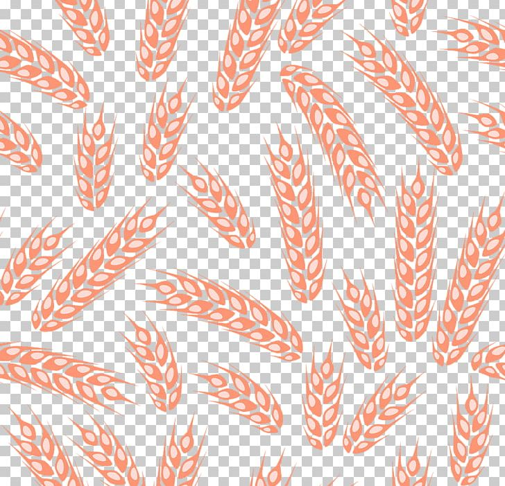 Wheat Shading PNG, Clipart, Corn, Designer, Download, Ear, Ears Free PNG Download