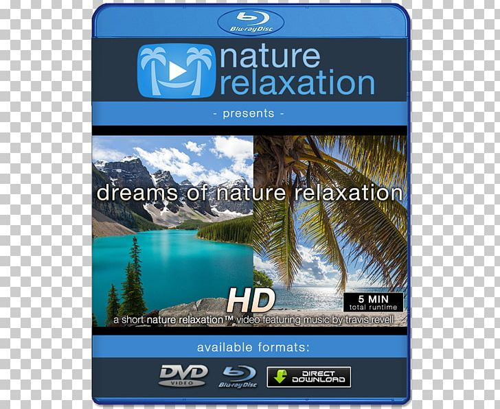 4K Resolution Music Art High-definition Video PNG, Clipart