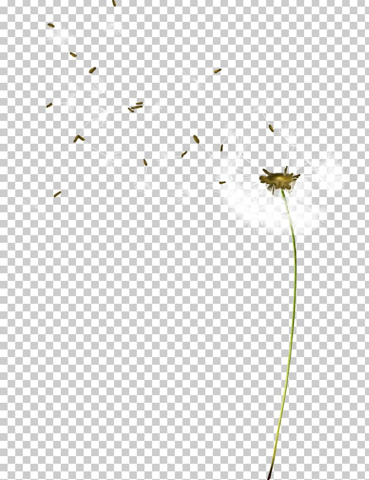 Pattern PNG, Clipart, Angle, Animation, Antique, Black Dandelion, Cartoon Free PNG Download