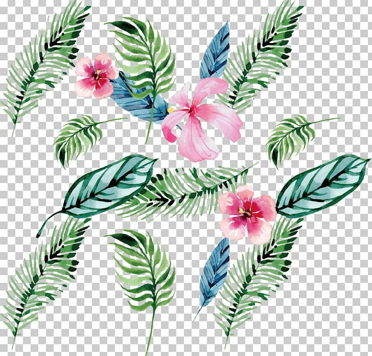 Watercolor Painting Drawing Plant Euclidean PNG, Clipart, Color, Feather, Flora, Floral Design, Flower Free PNG Download
