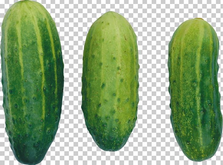 Cucumber Icon PNG, Clipart, Computer Icons, Cucumber, Cucumber Gourd And Melon Family, Cucumber Png, Cucumis Free PNG Download