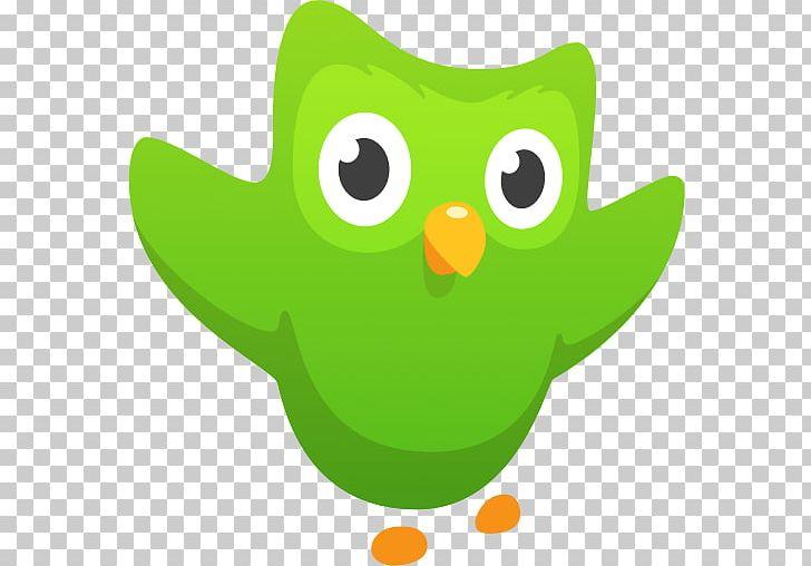 Duolingo Memrise Learning Language Education PNG, Clipart