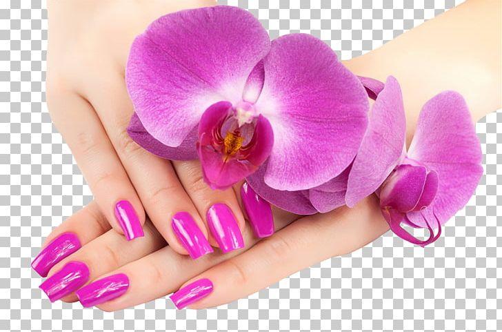 Nail Salon Nail Polish Gel Nails Pedicure Png Clipart Beauty