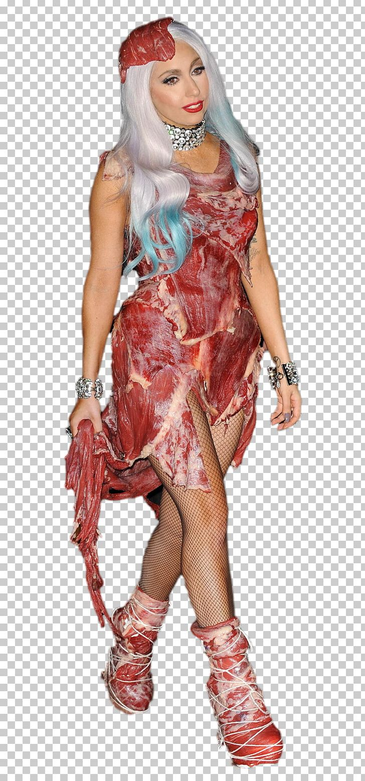 Lady Gaga S Meat Dress Flesh Costume Png Clipart Free Png Download