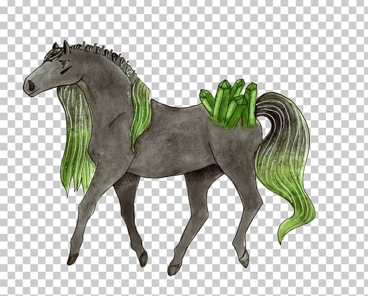 Stallion Mustang Foal Mare Colt PNG, Clipart,  Free PNG Download