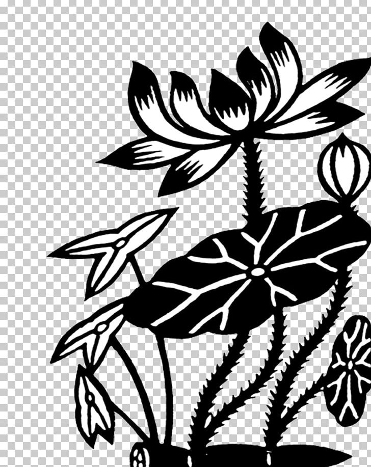 Nelumbo Nucifera Lotus Root Black And White Png Clipart