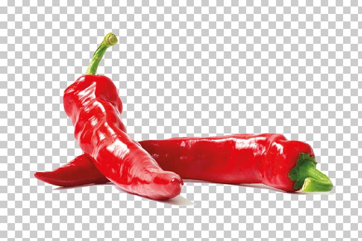 Bird's Eye Chili Piquillo Pepper Serrano Pepper Tabasco Pepper Cayenne Pepper PNG, Clipart, Cayenne Pepper, Piquillo Pepper, Serrano Pepper, Spice, Tabasco Pepper Free PNG Download