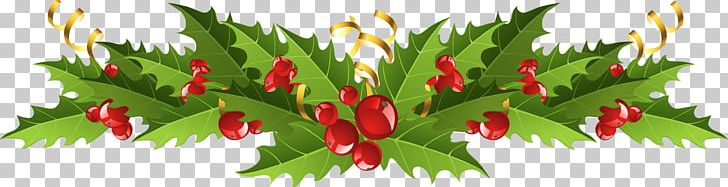 Christmas Clipart Holly.Mistletoe Christmas Decoration Common Holly Png Clipart