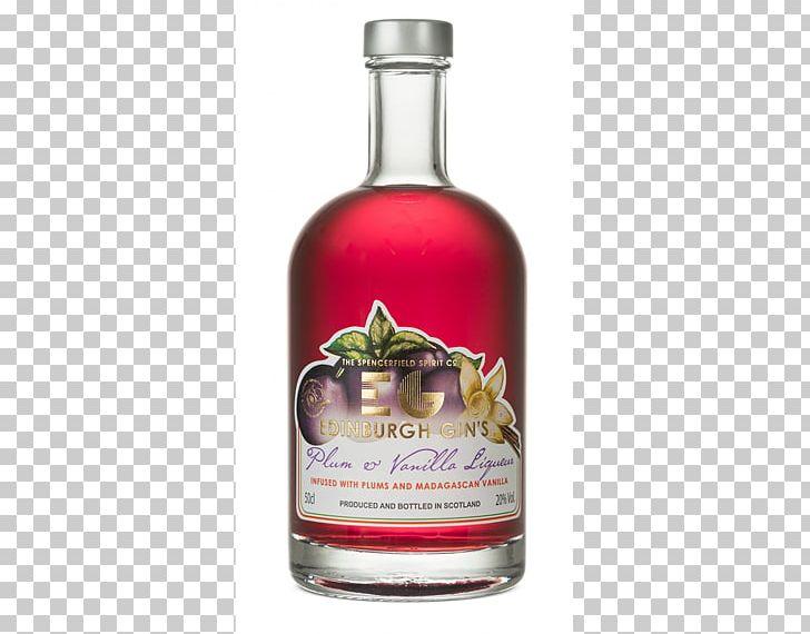 Gin And Tonic Distilled Beverage Elderflower Cordial Liqueur Png