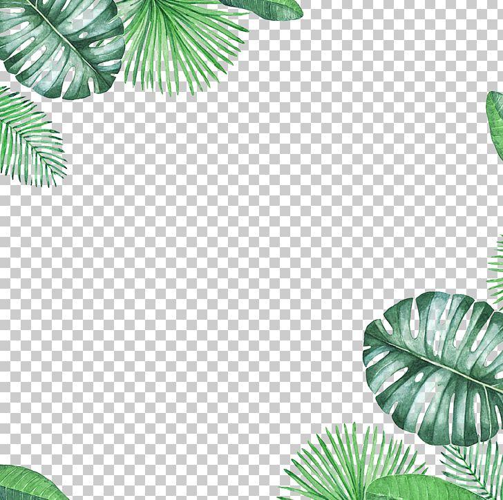 Leaf PNG, Clipart, Border, Border Frame, Border Texture, Certificate Border, Christmas Border Free PNG Download