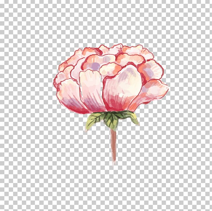 Watercolor: Flowers Watercolor Painting Peony PNG, Clipart, Cut Flowers, Download, Floral Design, Floristry, Flower Free PNG Download