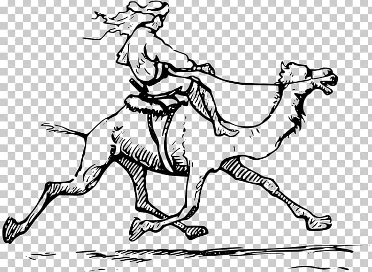 Camel Drawing D Palestine PNG, Clipart, Animals, Arm, Art