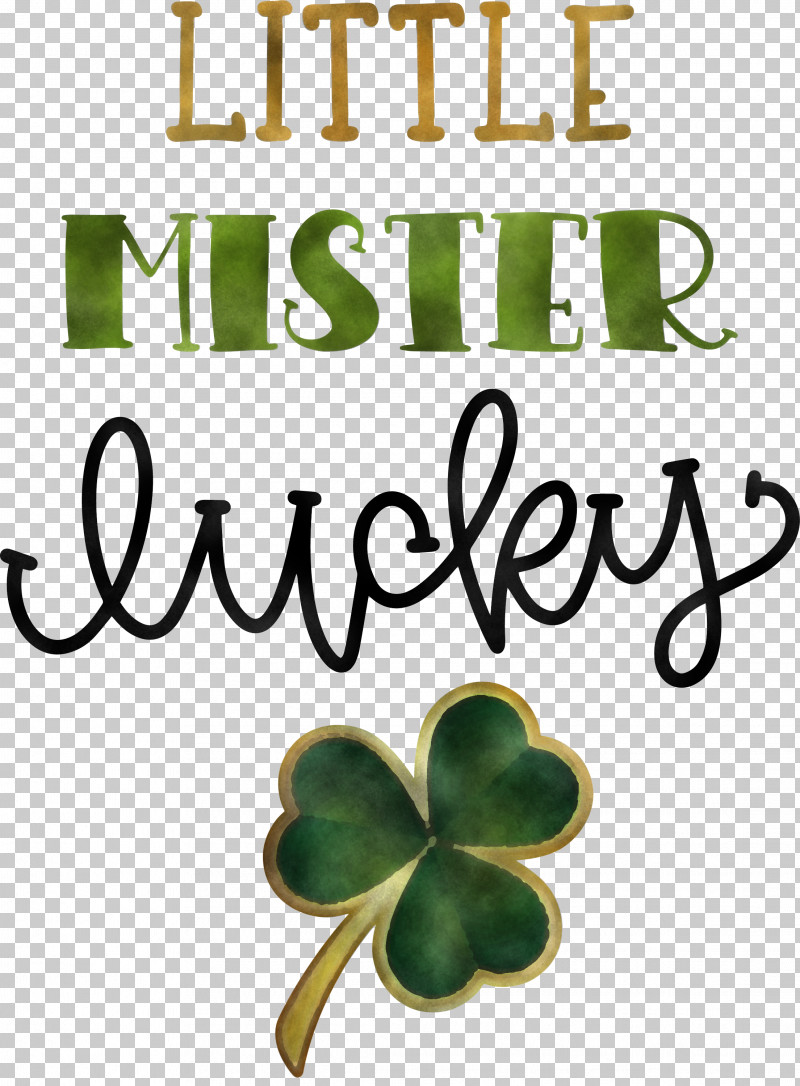 Little Mister Lucky Patricks Day Saint Patrick PNG, Clipart, Biology, Flower, Fruit, Leaf, Meter Free PNG Download