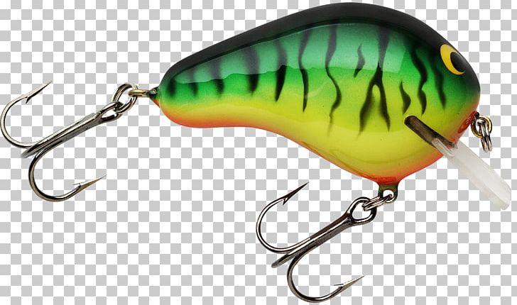 Fishing Baits & Lures Bass Fishing Fishing Tackle PNG
