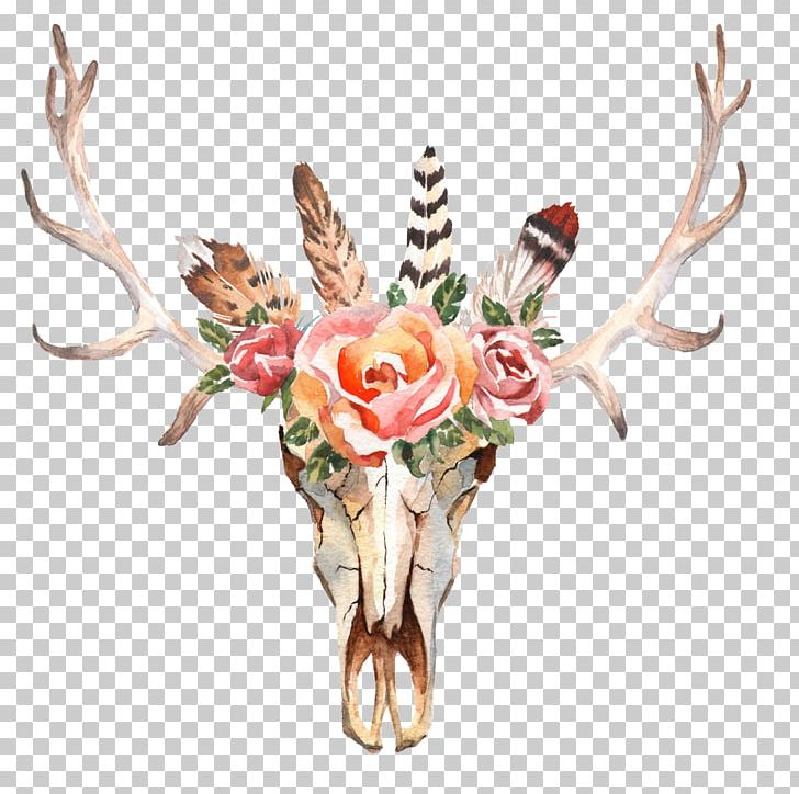 Deer Flower Skull Stock Photography Horn PNG, Clipart, Animals, Antler, Bohochic, Cut Flowers, Deer Free PNG Download