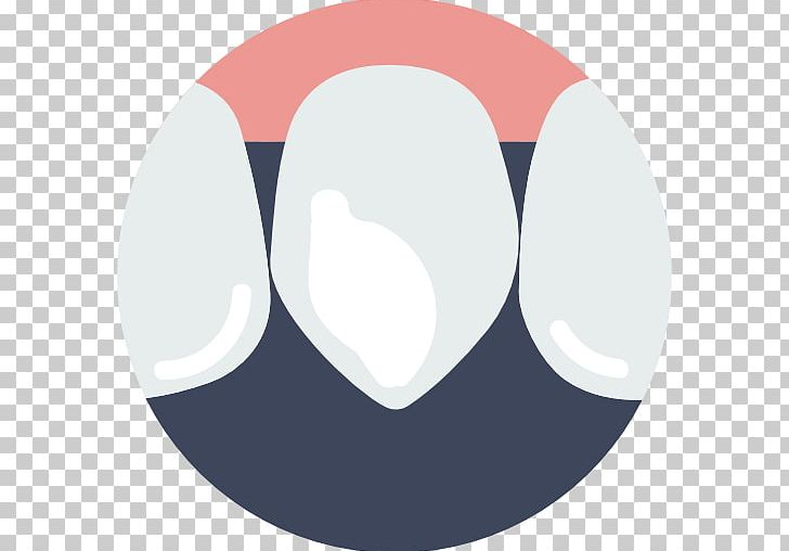 Human Tooth Canine Tooth Dentistry Computer Icons PNG, Clipart, Canine, Canine Tooth, Circle, Computer Icons, Dental Free PNG Download