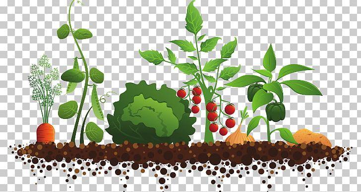Sensory Garden Community Gardening PNG, Clipart, Clip Art, Color Garden, Community, Community Gardening, Flower Garden Free PNG Download