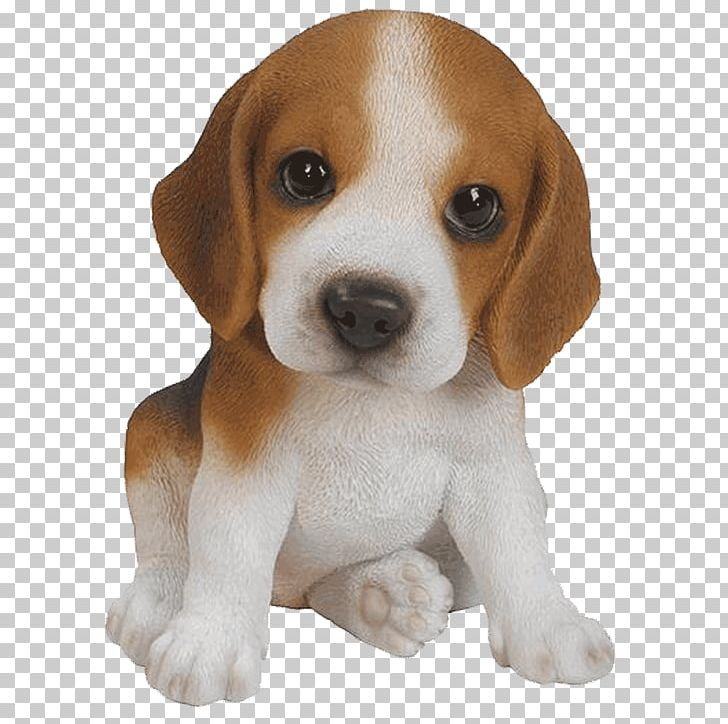 Christmas Beagle Clipart.Beagle Puppy Yorkshire Terrier Pug Pet Png Clipart Animals