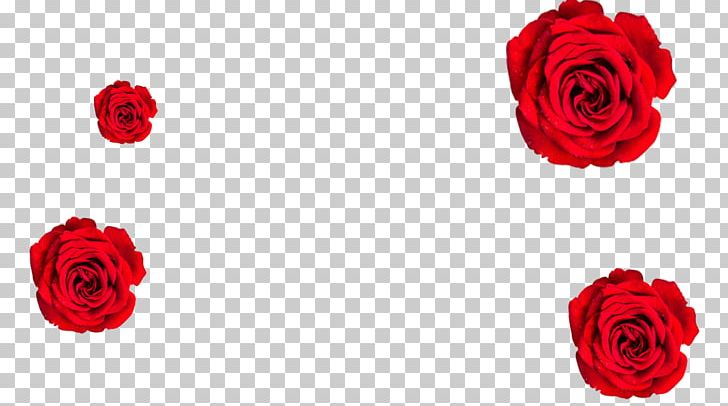 Garden Roses Floral Design Cut Flowers Flower Bouquet PNG, Clipart, Artificial Flower, Black Girl Magic, Cut Flowers, Dirty Computer, Electric Lady Free PNG Download