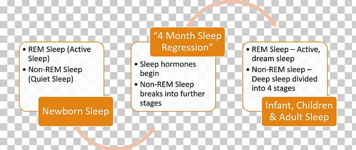 Organization Psychologist Sleep Group Dynamics Regression Analysis PNG, Clipart, Area, Attitude, Brand, Communication, Diagram Free PNG Download