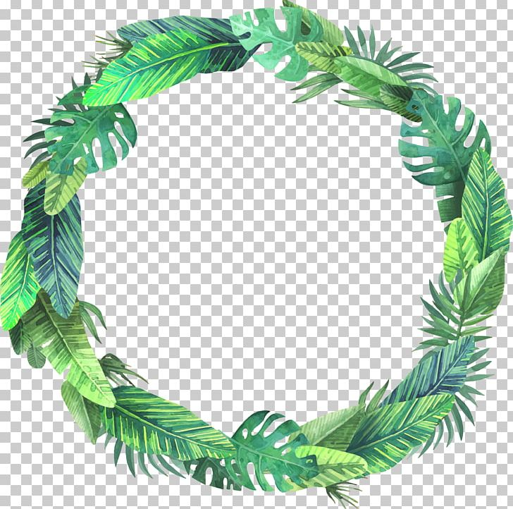 Leaf Euclidean PNG, Clipart, Arecaceae, Autumn Leaf Color, Autumn Leaves, Bush, Coniferous Plants Free PNG Download