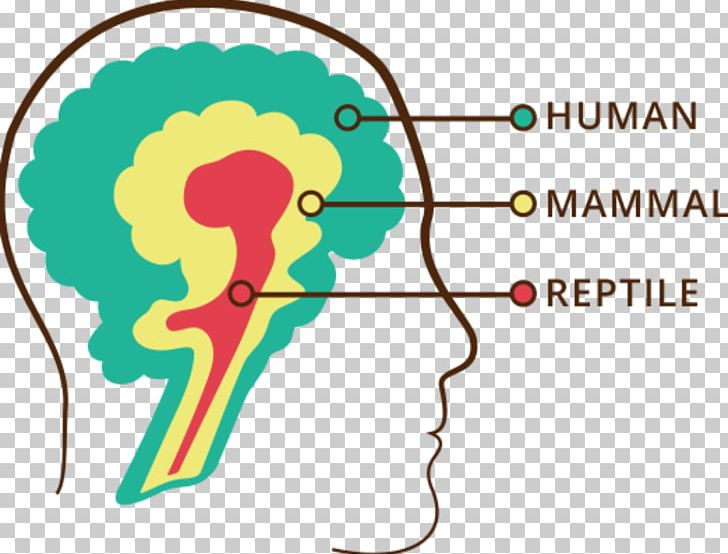Triune Brain Reptile Head Strong: The Bulletproof Plan To Activate Untapped Brain Energy To Work Smarter And Think Faster-in Just Two Weeks Human Brain PNG, Clipart, Anatomy, Area, Basal Ganglia, Biology, Brain Free PNG Download