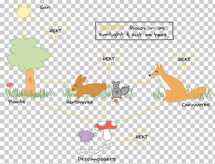 energy flow ecosystem food chain diagram food web png, clipart, angle,  area, art, biology,