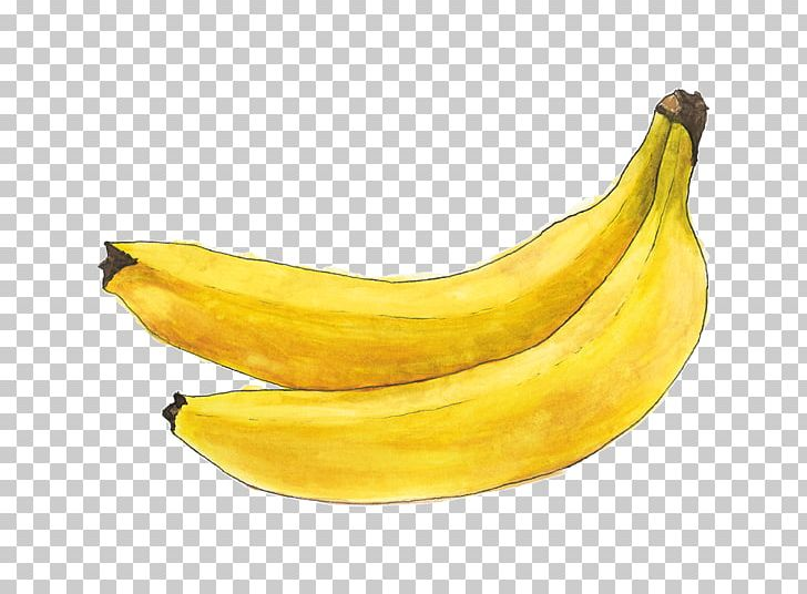 Saba Banana Cooking Banana Fruit Apricot PNG, Clipart, Apricot, Auglis, Banana, Banana Family, Banane Free PNG Download