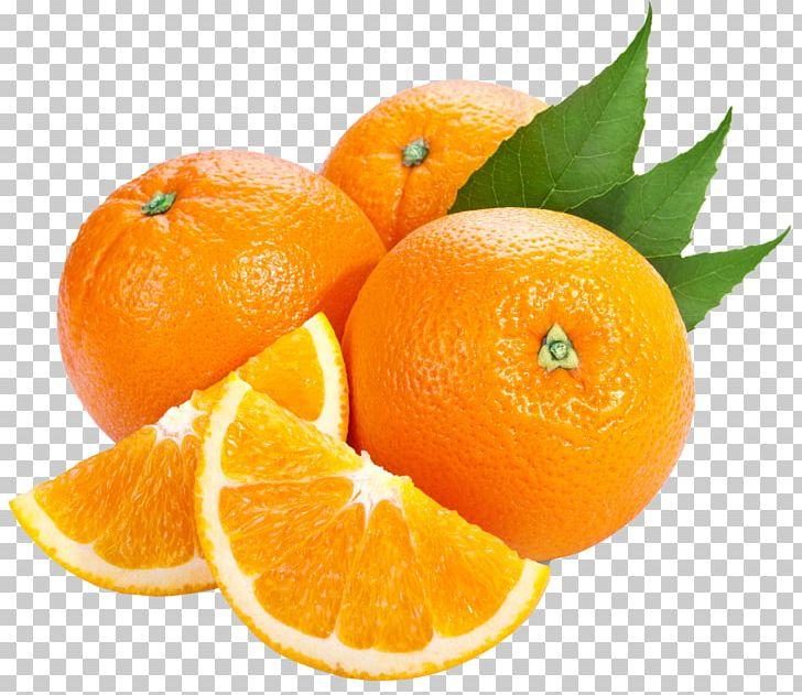 Bitter Orange Tangerine PNG, Clipart, Bitter Orange, Citric Acid, Citrus, Clementine, Clipart Free PNG Download