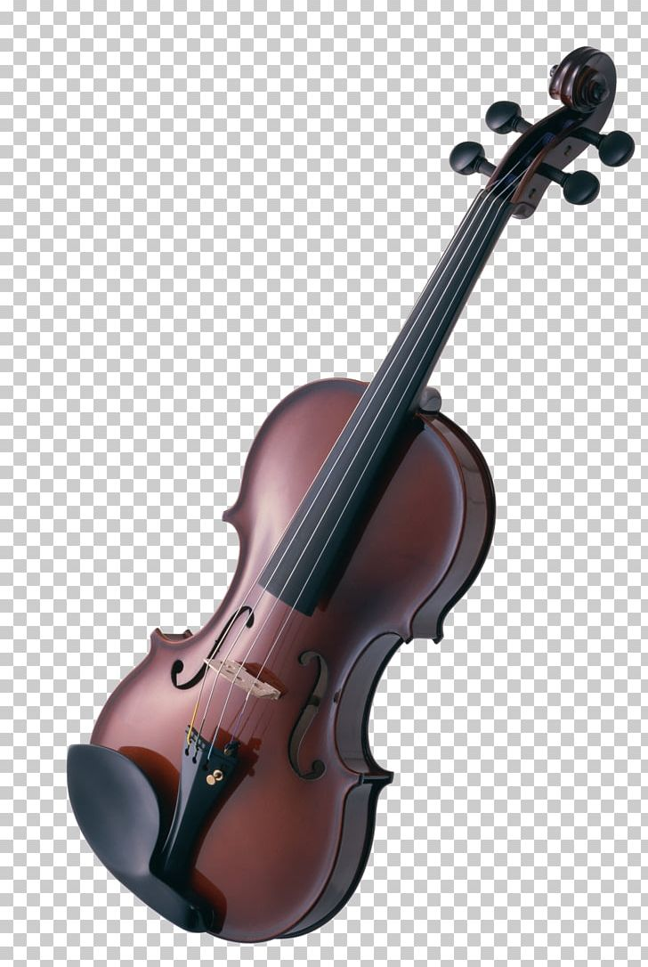 Violin Musical Instruments String Instruments Cello PNG, Clipart, Bowed String Instrument, Cello, Chamber Music, Classical Music, Double Bass Free PNG Download
