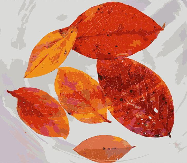 Autumn Leaf Color Tree PNG, Clipart, Autumn, Autumn Leaf Color, Autumn Leaves, Color, Computer Icons Free PNG Download