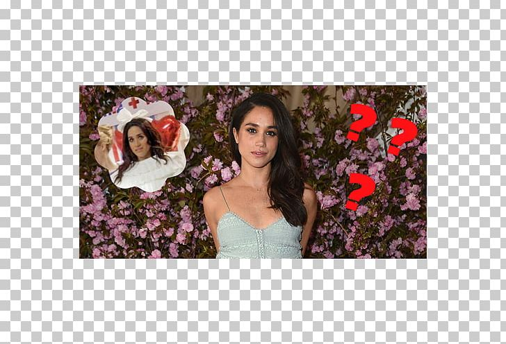 Wedding Of Prince Harry And Meghan Markle Suits Engagement Actor PNG, Clipart, Actor, Black Hair, Catherine Duchess Of Cambridge, Celebrity, Dress Free PNG Download