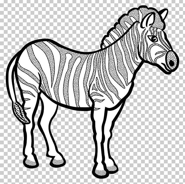 Zebra Coloring Book Horse Quagga PNG, Clipart, Animal ...