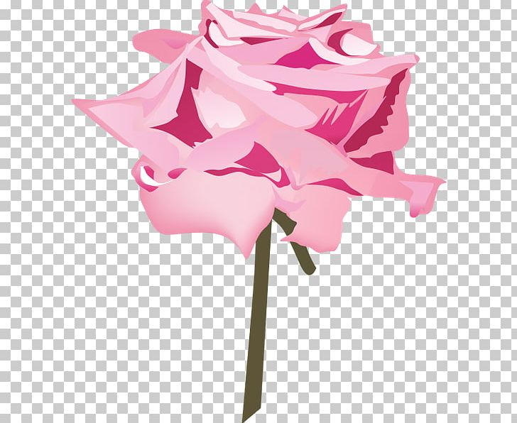 Cut Flowers Floral Design Rose Family Plant Stem PNG, Clipart, Cut Flowers, Family, Flora, Floral Design, Flower Free PNG Download
