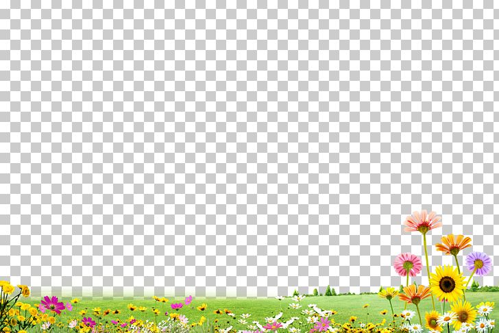 Grass Flower Garden Flower PNG, Clipart, Computer Icons, Design, Diagram, Download, Drawing Free PNG Download