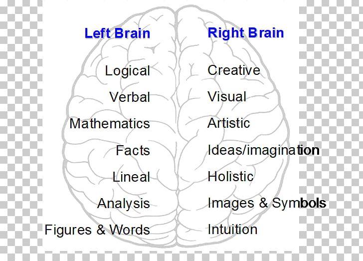 Brain Human Behavior Organism Cerebral Hemisphere PNG, Clipart, Angle, Area, Behavior, Brain, Cerebral Hemisphere Free PNG Download