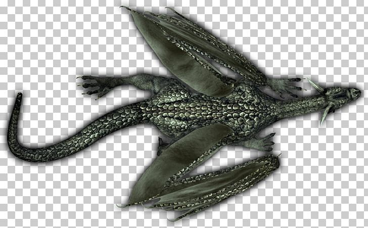 Reptile PNG, Clipart, Dragon, Others, Reptile Free PNG Download