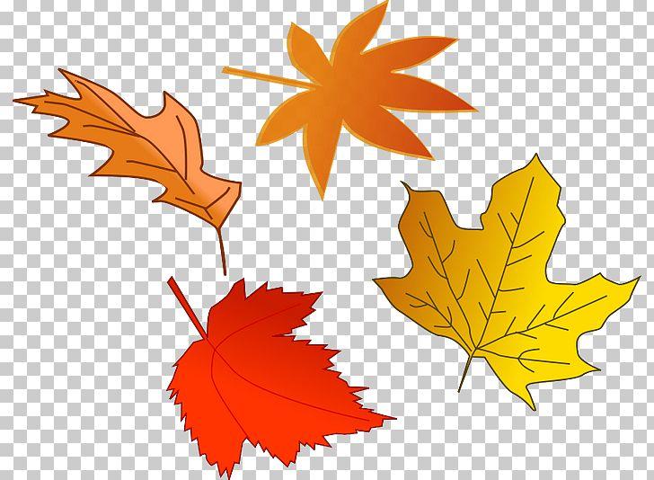 Autumn Leaf Color PNG, Clipart, Art, Autumn, Autumn Leaf Color, Clipart, Clip Art Free PNG Download