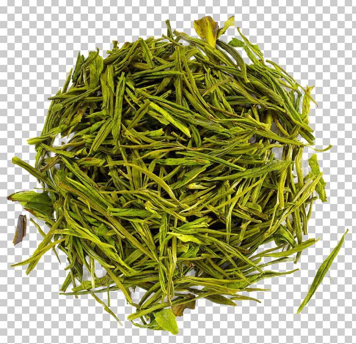 Namul Hōjicha Vegetable Bancha Prosopis Cineraria PNG, Clipart, Baihao Yinzhen, Bai Mudan, Bancha, Bean, Biluochun Free PNG Download