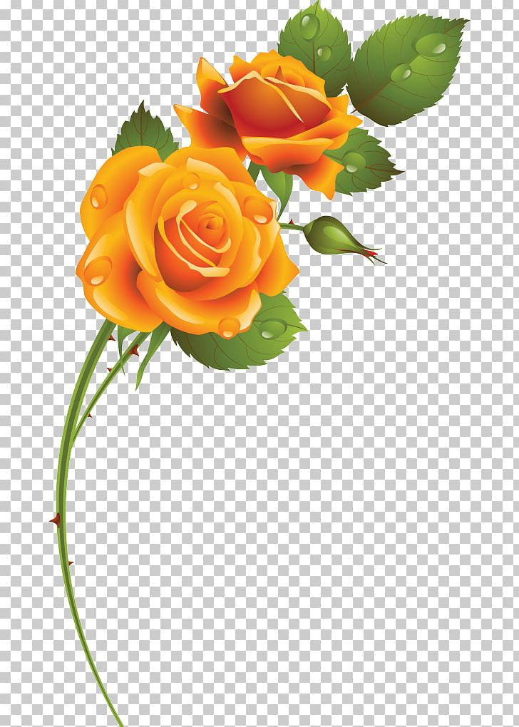 Garden Roses Floral Design Cut Flowers Blue Rose PNG, Clipart, Cut Flowers, Fleur, Floral Design, Floristry, Flower Free PNG Download