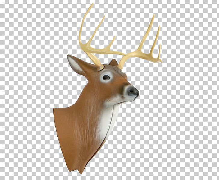 Deer Target Archery Hunting Shooting Target PNG, Clipart, Animals, Antler, Archery, Archery Games, Bow And Arrow Free PNG Download
