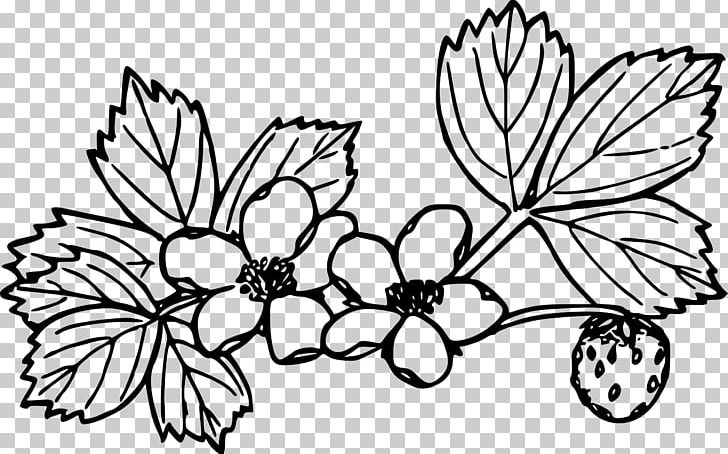 - Wild Strawberry Coloring Book PNG, Clipart, Branch, Brush Footed Butterfly,  Flower, Food, Fruit Free PNG Download