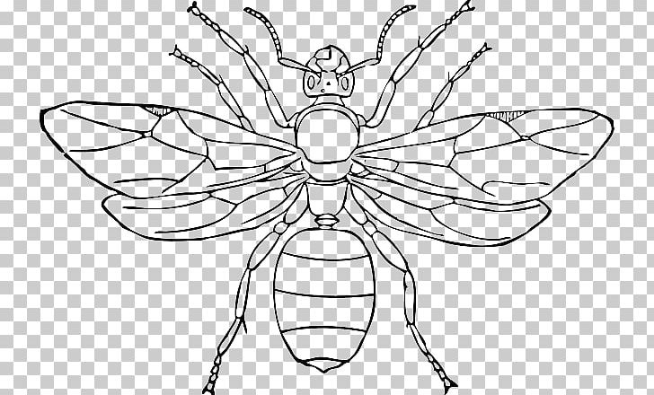 Queen Ant Insect PNG, Clipart, Ant, Arthropod, Artwork, Black And White, Black Garden Ant Free PNG Download