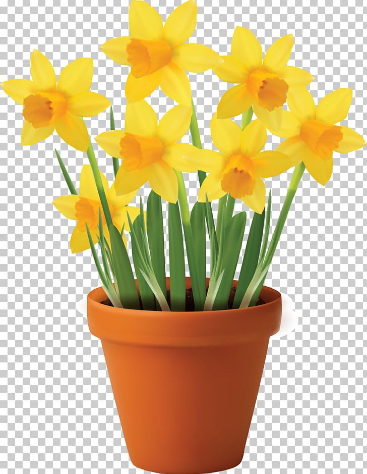 Flowerpot Vase PNG, Clipart, Amaryllis Family, Clip Art, Container, Cut Flowers, Daffodils Free PNG Download