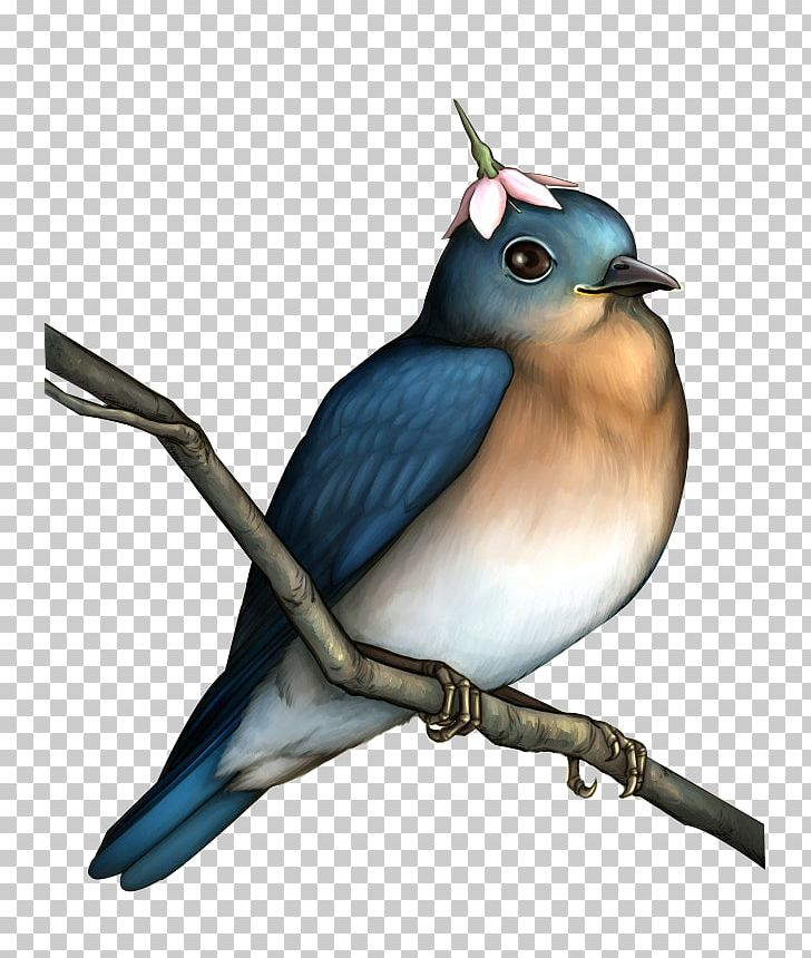 Bird Flower PNG, Clipart, Animal, Animals, Beak, Bird Cage, Birds Free PNG Download